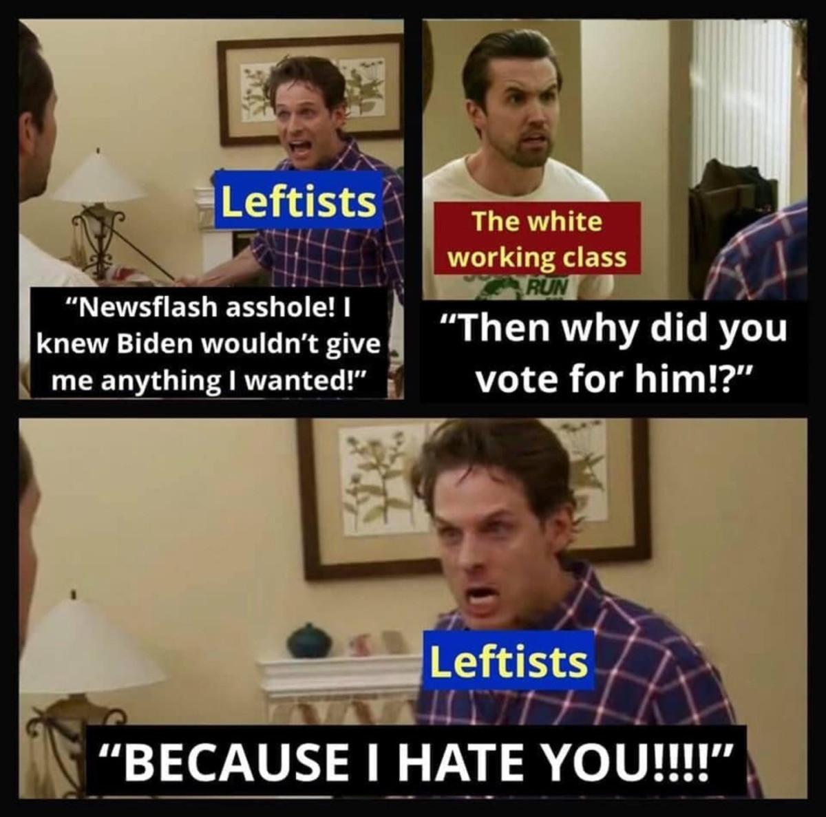 Biden supporters - meme