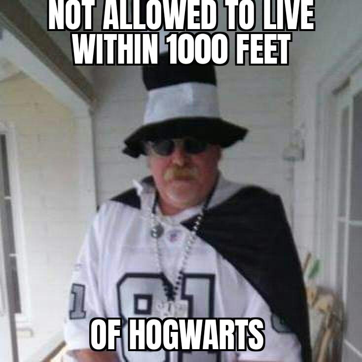 Speak softly and carry a big wand - meme