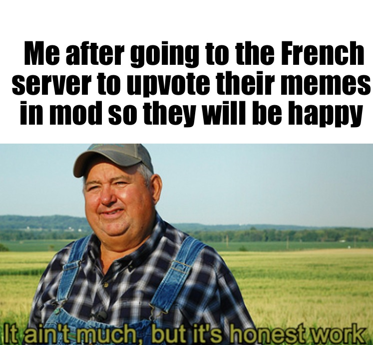 Uploaded a French version of this in their server - meme
