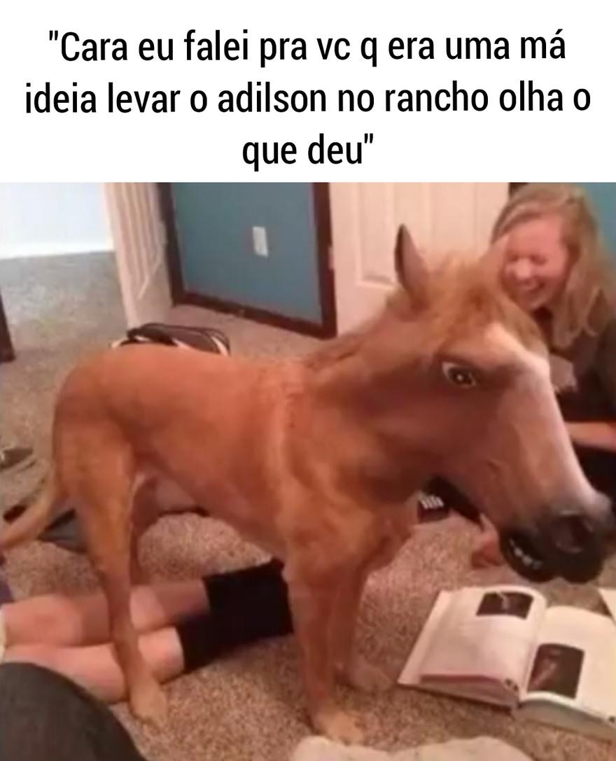 Cachorro caramelu - meme