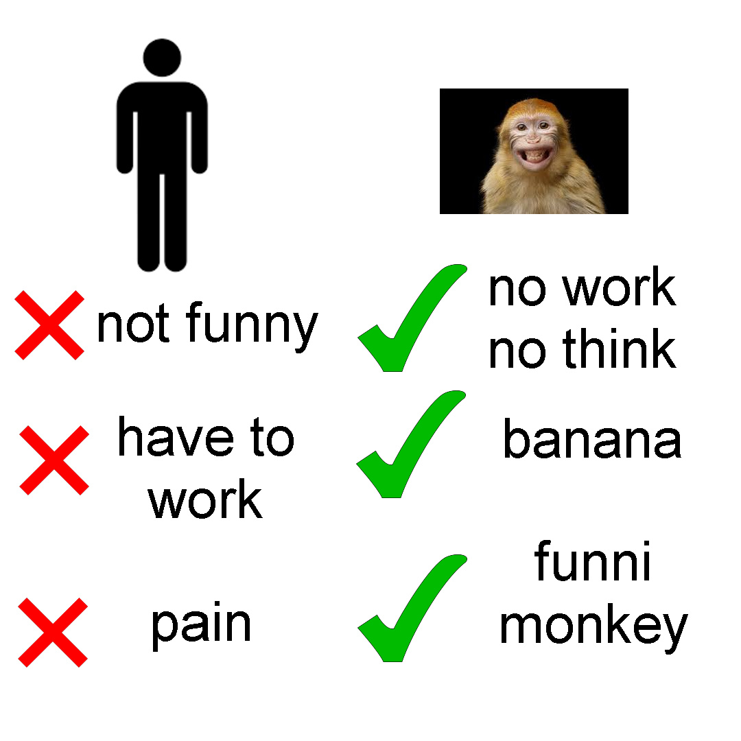 this is my first meme on here sorry if its bad also funni munky haha xd