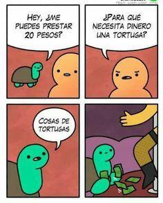 Cosas de tortugas - meme