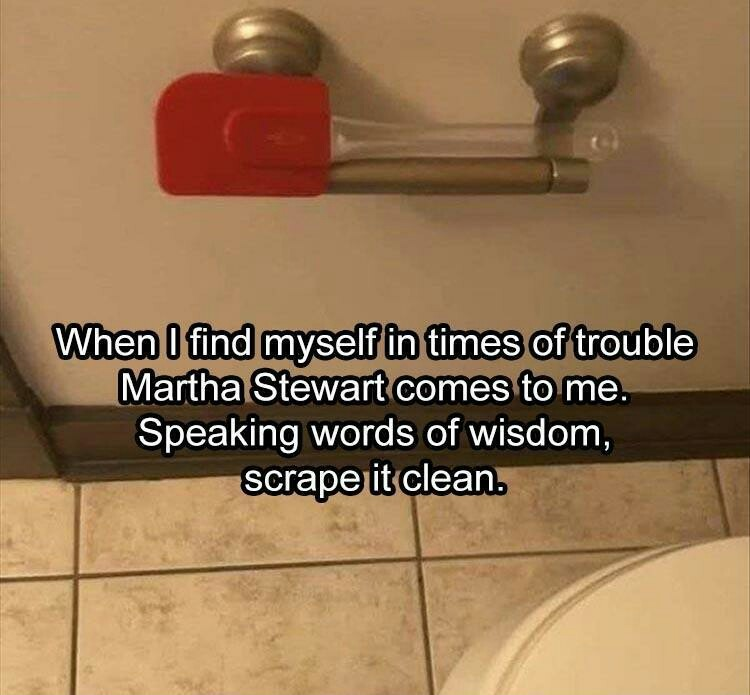 I'll try it. I bought a toilet brush and it made a bigger mess that Charmin TP ever did. - meme