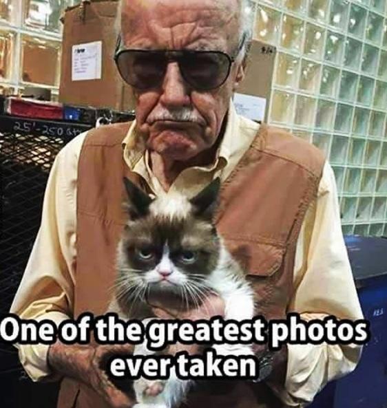 grumpy <3 - meme