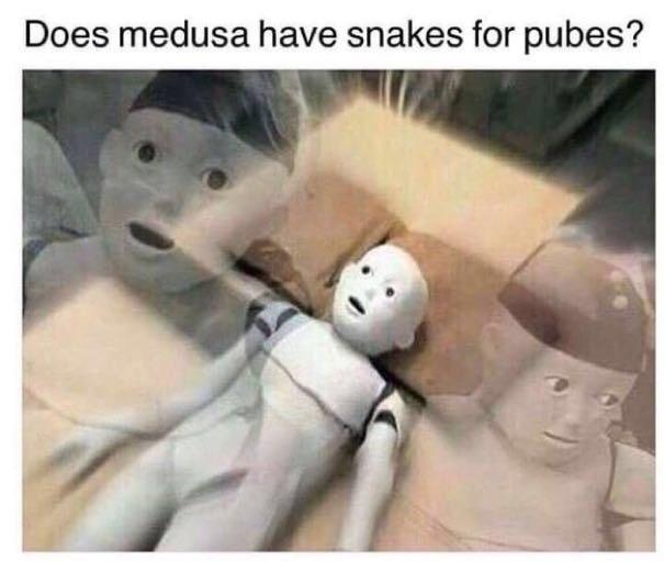 Shitposter - meme