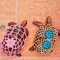 Poxa vó até a tartaruga