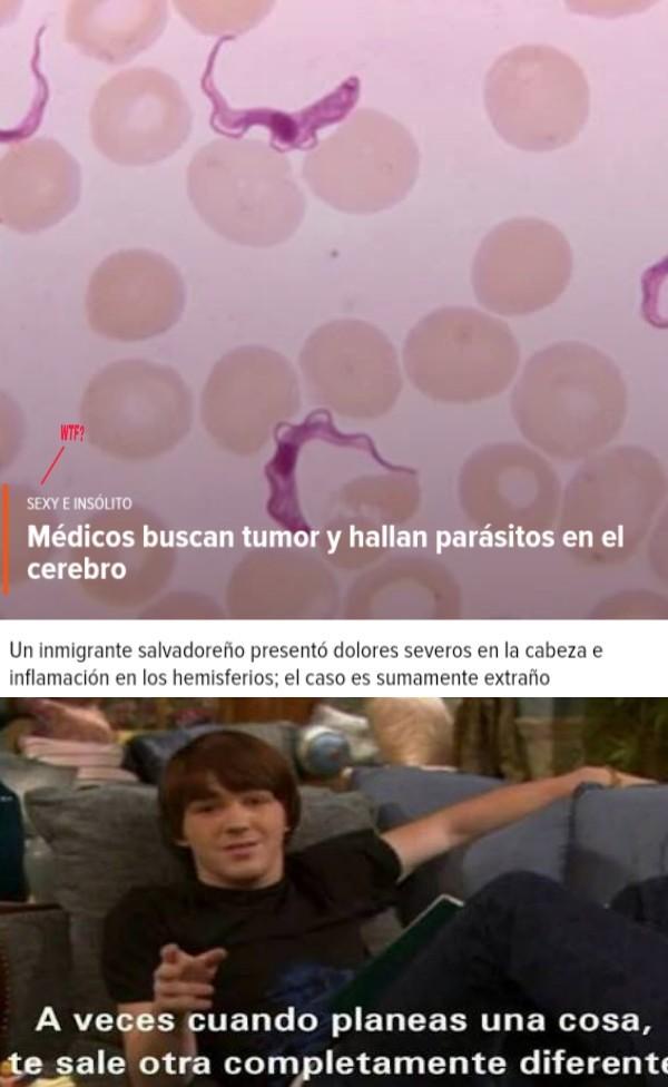 Porque tumores y parásitos son sexys!? - meme