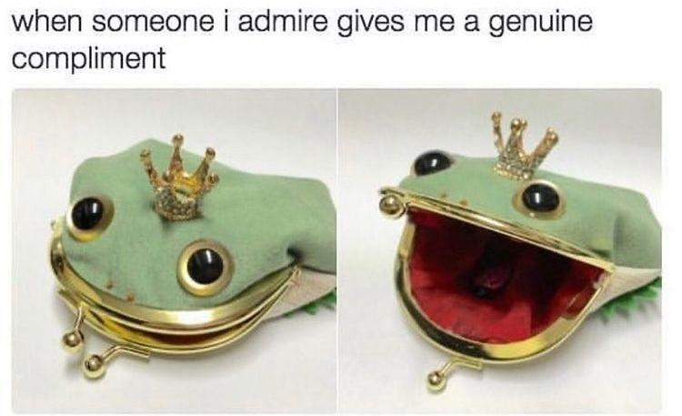 I too am a froggy purse - meme