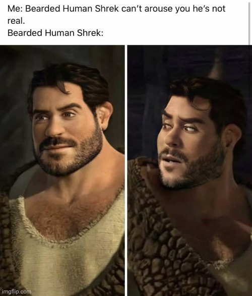 Guess i'm Homoshreksual - meme