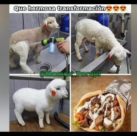 Quiero una carne bien jugosa - meme