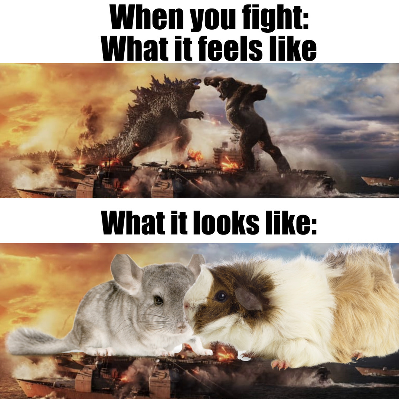 Sad true and crapply made - meme