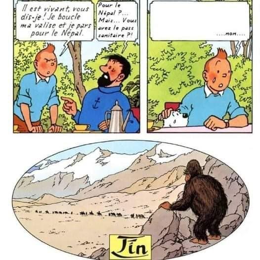 Le pass sanitaire est un complot organisé par le Yéti pour pas qu'on puisse le chercher - meme