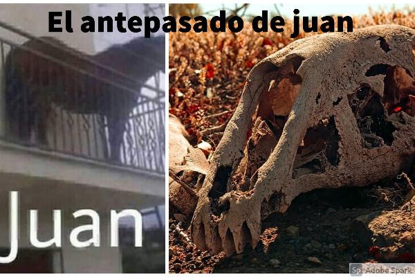 Se difunde el antepasado de juan!!!! - meme