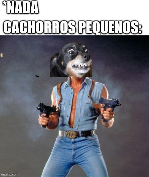 Dogo - meme