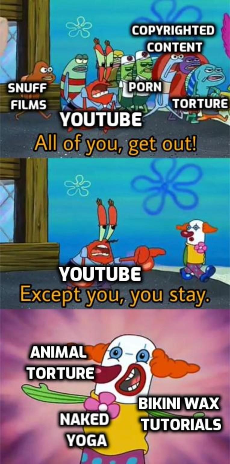 Youtube in a nutshell - meme
