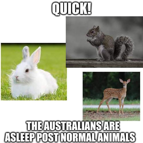 Australia - meme