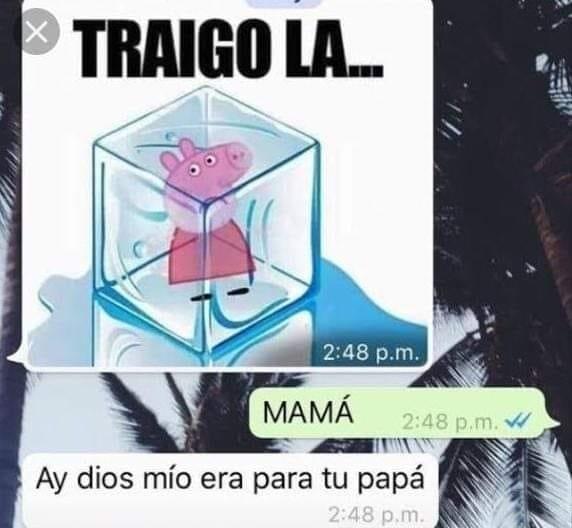 Momento chat XD - meme
