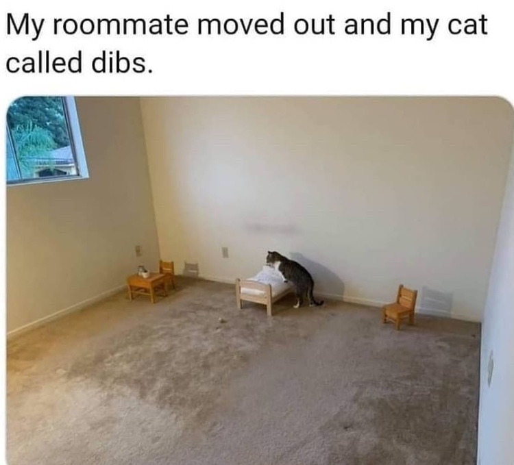 I'd let him stay rent free - meme