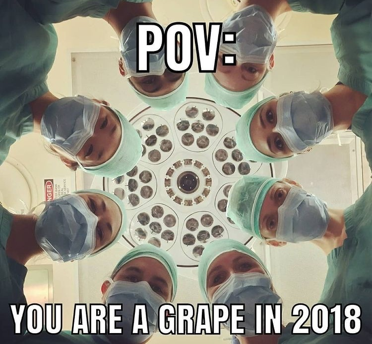 they did surgery on a grape - meme