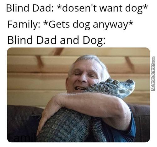 Dog. - meme