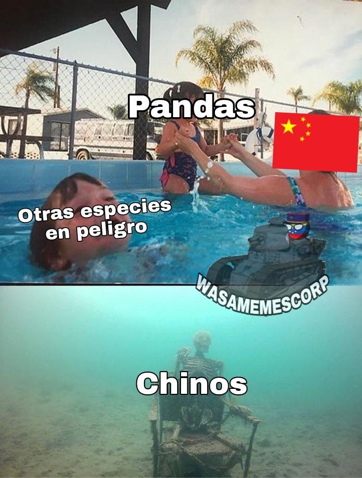 Que vale más? 1000 chinos o un panda? Obviamente el panda :gobienochino: - meme