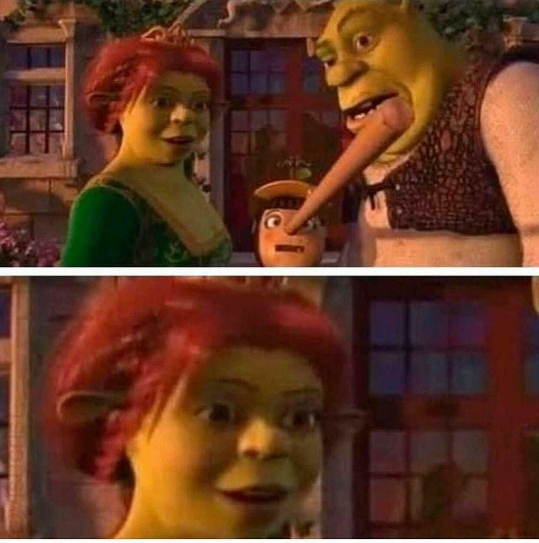 Por dios Fiona  - meme
