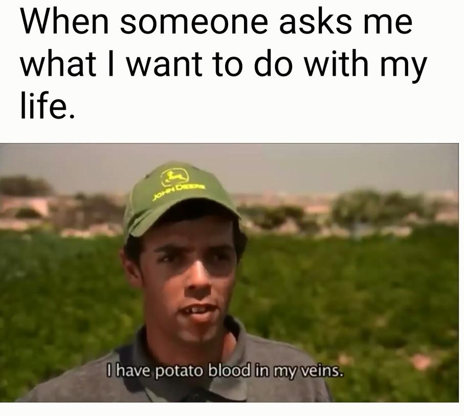 A potato's life for me - meme