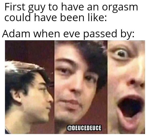 The Genesis of Orgasm - meme