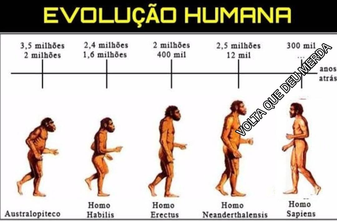 Retorne ao macaco - meme