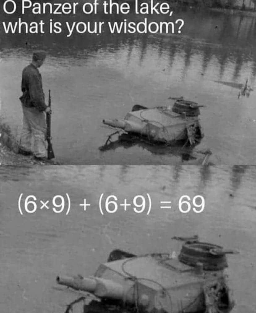 Wise TonK - meme