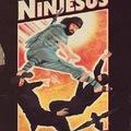 Beware pagans, here comes Ninjesus