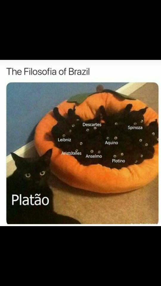 faltou Piton - meme