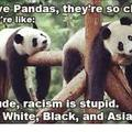 DONT BE RACIST KIDS