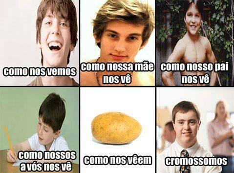 1 cromossomo - meme