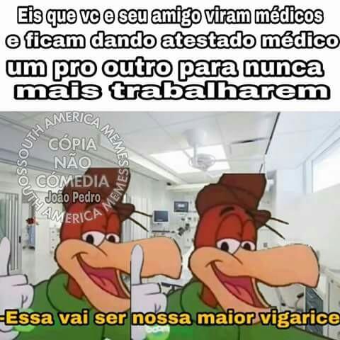 Insano - meme