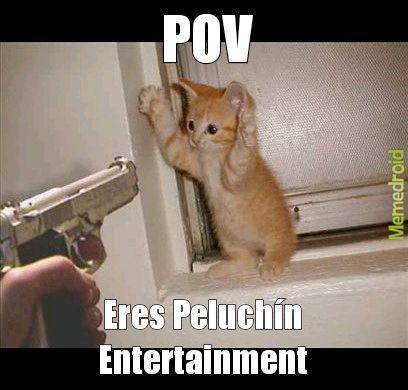 Contexto: Peluchín Entertainment se hizo conocido por asesinar a sus gatos. Este Point Of Wiew lo muestra en acción por dispararle a un minino. - meme
