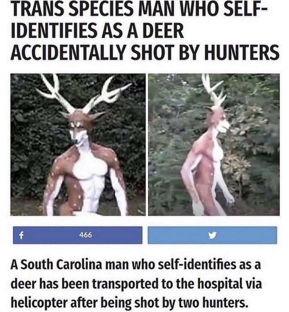 Contexto: un hombre que se cree venado fue disparado por unos cazadores - meme