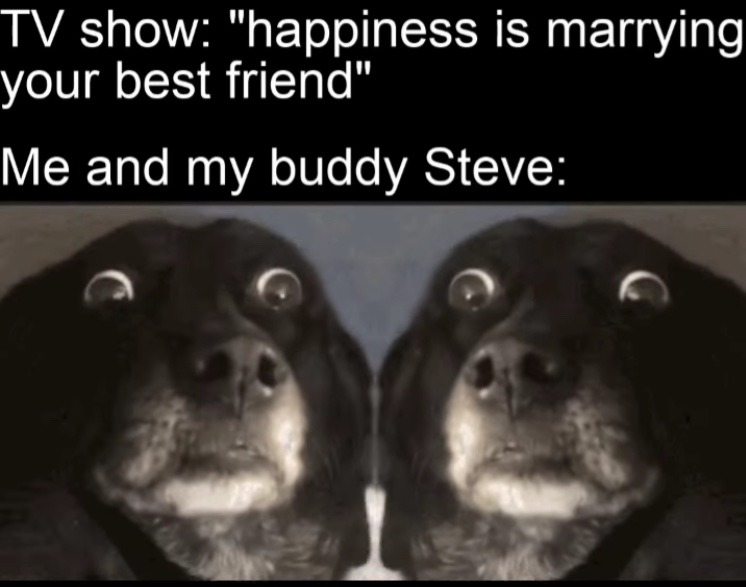 Steve no - meme