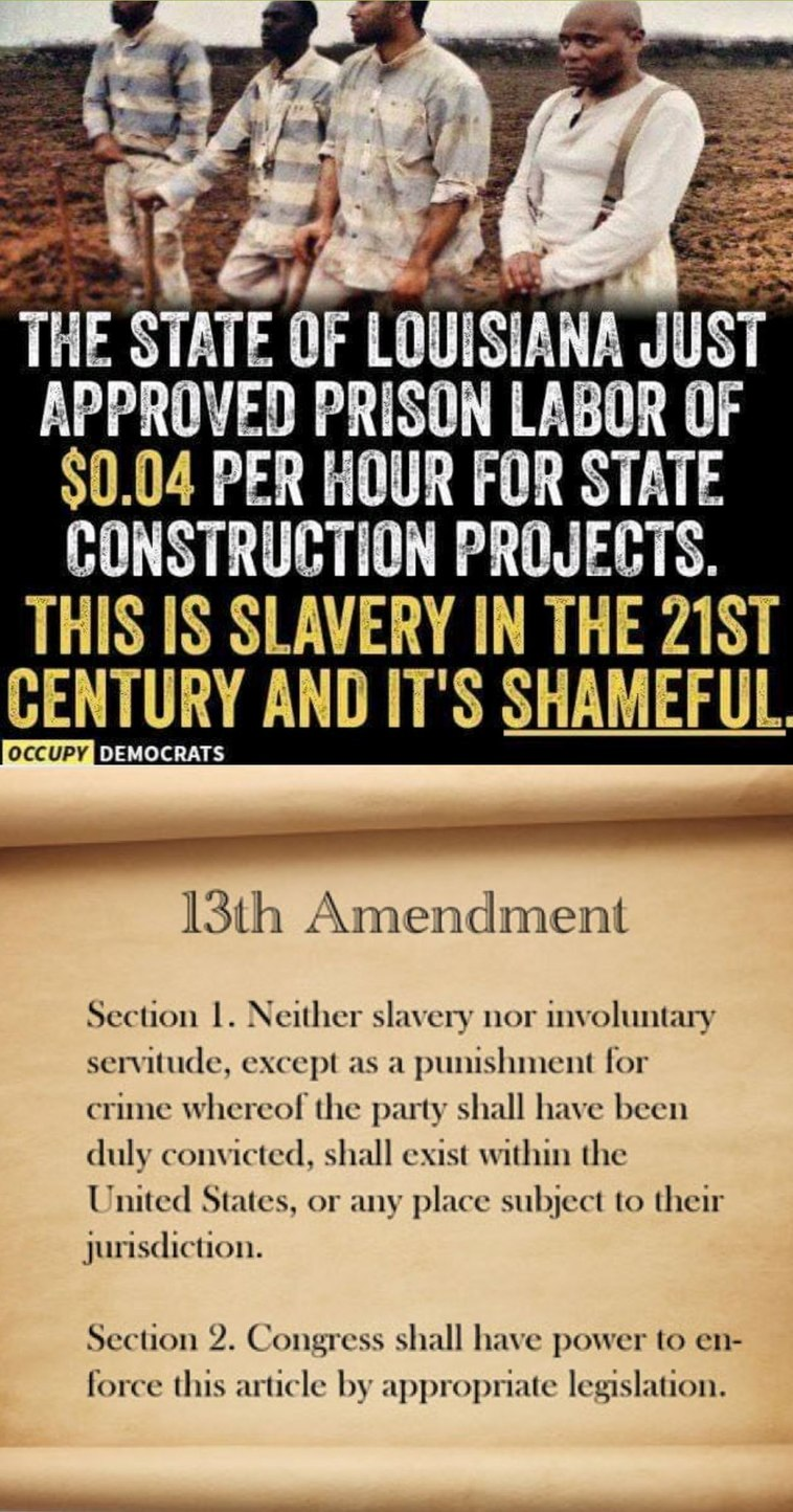 13th Amendment - meme