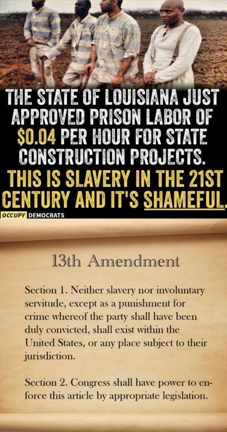13th Amendment - meme
