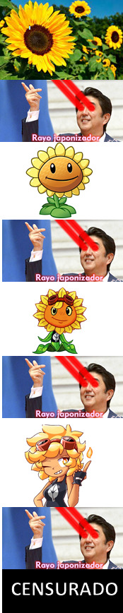 Girasol - meme