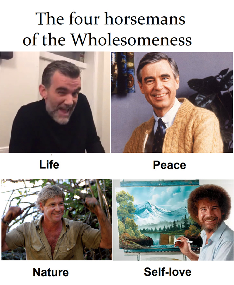 Wholesome - meme