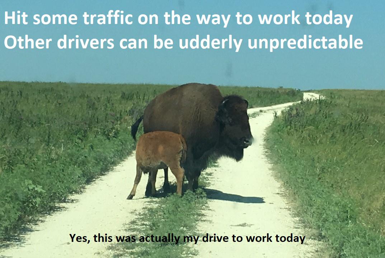 Traffic sucks - meme