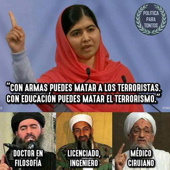 armas, educación. solo existe el poder - meme