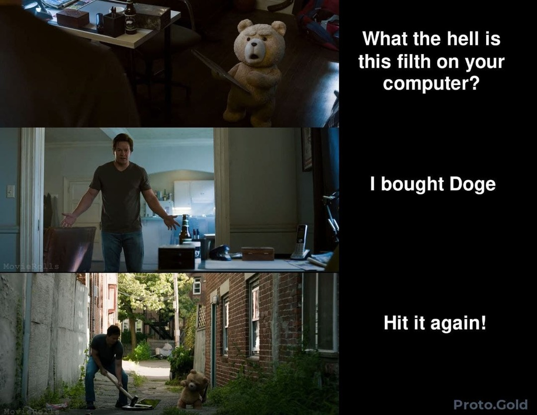 You bought Doge? Really? - meme