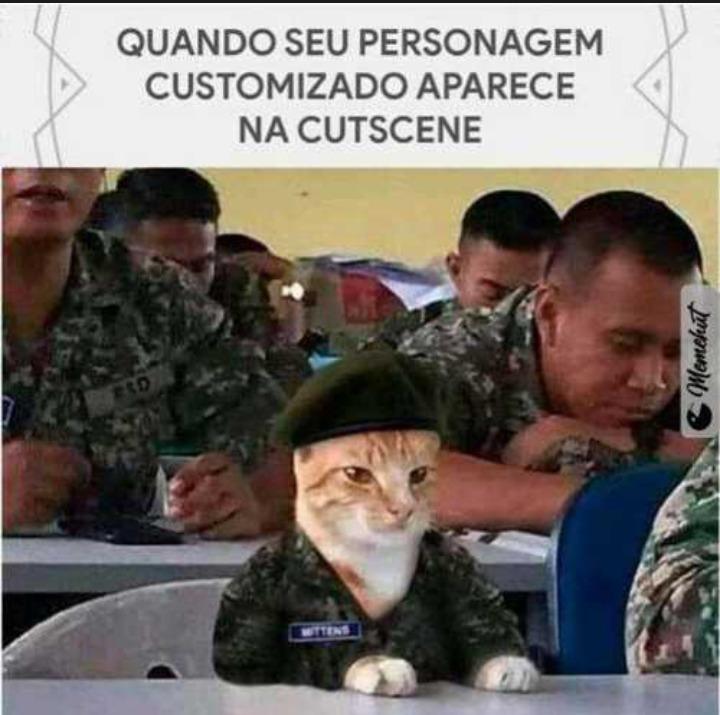 Gato personalizado - meme