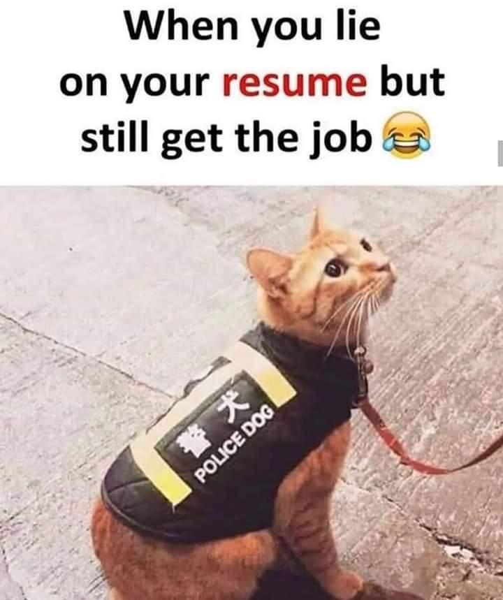 Ignore the emoji - meme
