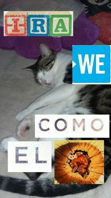 Copia de  Calacas chidas - meme