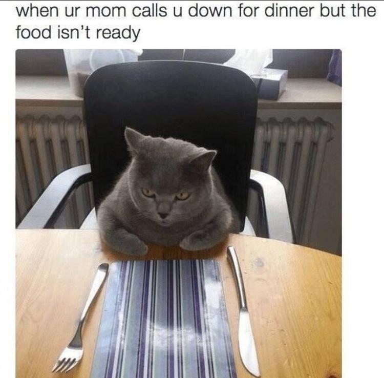 """""""set the table"""" - meme"""