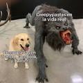 Regrese al fandom de los Creepypastas (AYUDA-)